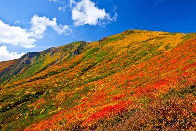 栗駒山の外観